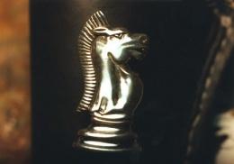 holster decoration, sterling