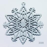 Snowflake 2008